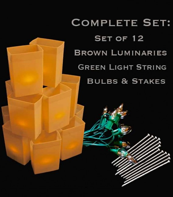 Set of 12 Brown Luminaries, Green Light String with Clear Bulbs, Stakes