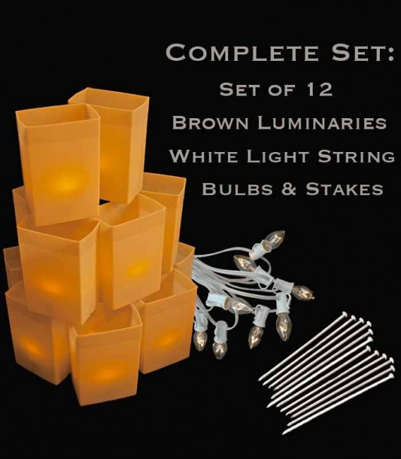 Set of 12 Brown Luminaries, White Light String with Clear Bulbs, Stakes