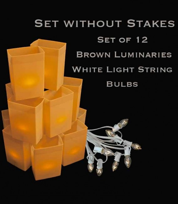 Set of 12 Brown Luminaries, White Light String with Clear Bulbs, No Stakes