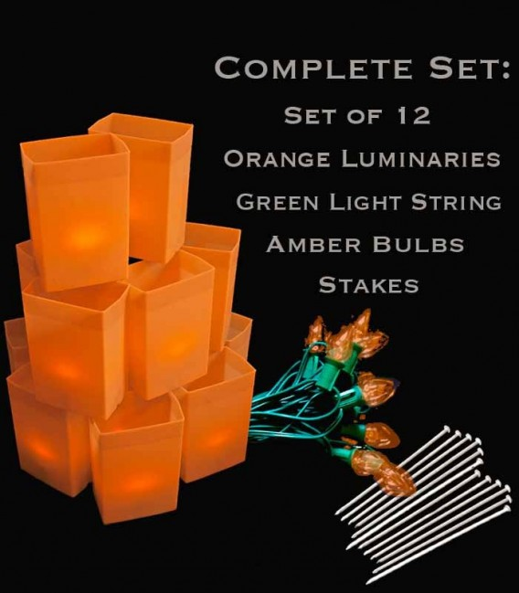 Set of 12 Orange Luminaries, Green Light String with Amber Bulbs, Stakes