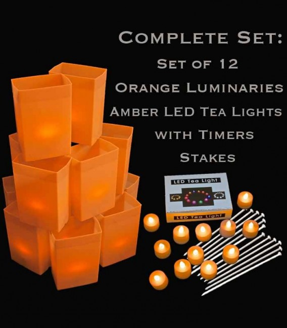 Set of 12 Orange Luminaries, Amber LED Tea Lights with Timers, Stakes