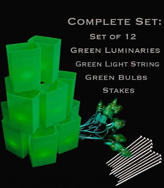 Set of 12 Green Luminaries, Green Light String with Green Bulbs, Stakes