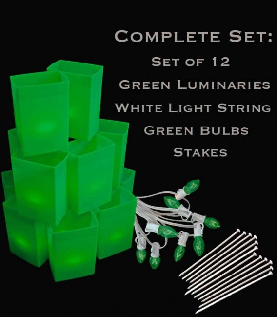 Set of 12 Green Luminaries, White Light String with Green Bulbs, Stakes