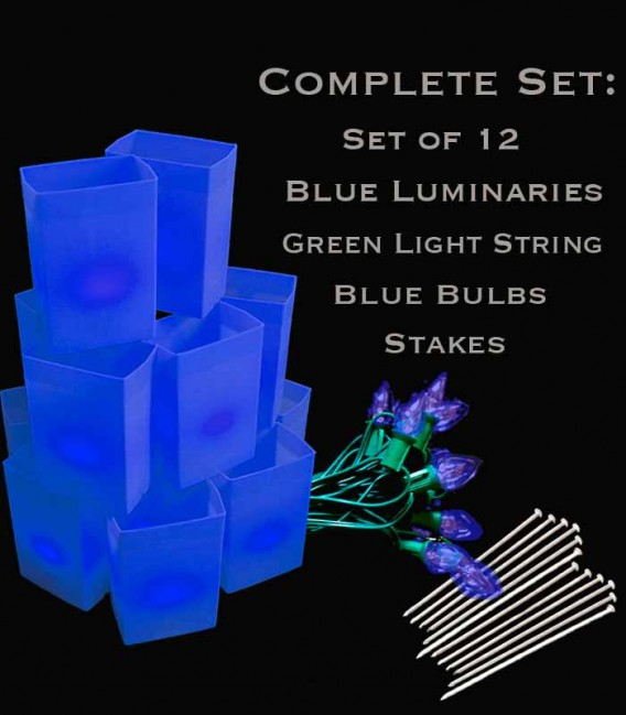 Set of 12 Blue Luminaries, Green Light String with Blue Bulbs, Stakes