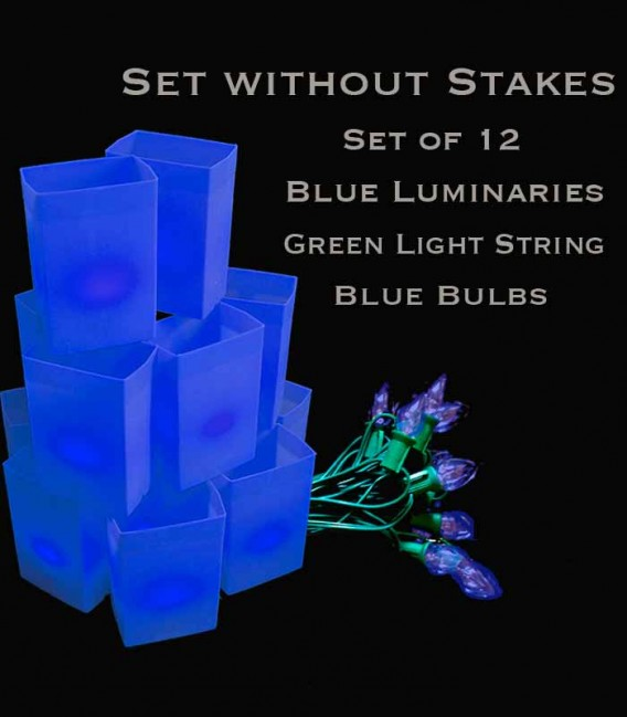 Set of 12 Blue Luminaries, Green Light String with Blue Bulbs, No Stakes