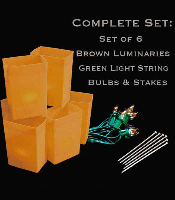 Set of 6 Brown Luminaries, Green Light String with Clear Bulbs, Stakes