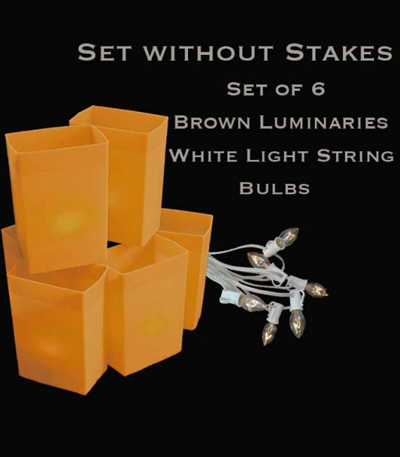 Set of 6 Brown Luminaries, White Light String with Clear Bulbs, No Stakes
