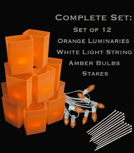 Set of 12 Orange Luminaries, White Light String, Amber Bulbs & Stakes