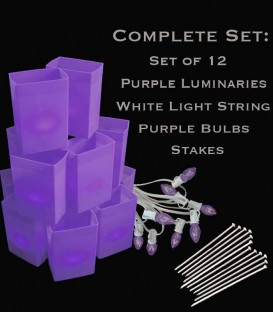 Set of 12 Purple Luminaries, White Light String, Purple Bulbs, Stakes