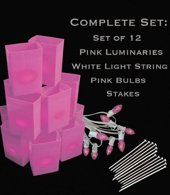Set of 12 Pink Luminaries, White Light String, Pink Bulbs & Stakes