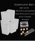 Set of 6 White Luminaries, LED Tea Lights & Stakes