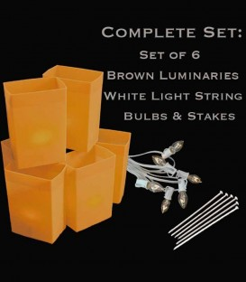 Set of 6 Brown Luminaries, White Light String, Bulbs & Stakes