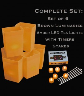 Set of 6 Brown Luminaries, Amber LED Tea Lights & Stakes