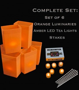 Set of 6 Orange Luminaries, Amber LED Tea Lights & Stakes