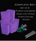Set of 6 Purple Luminaries, Light String, Purple Bulbs, Stakes