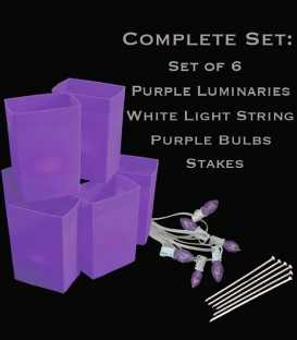 Set of 6 Purple Luminaries, White Light String, Purple Bulbs, Stakes