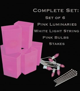 Set of 6 Pink Luminaries, White Light String, Pink Bulbs & Stakes